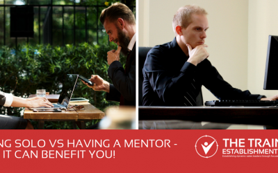 Flying Solo vs Having a Mentor – how it can benefit you!